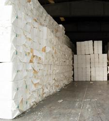 Pulp &<br /> Paper Mills